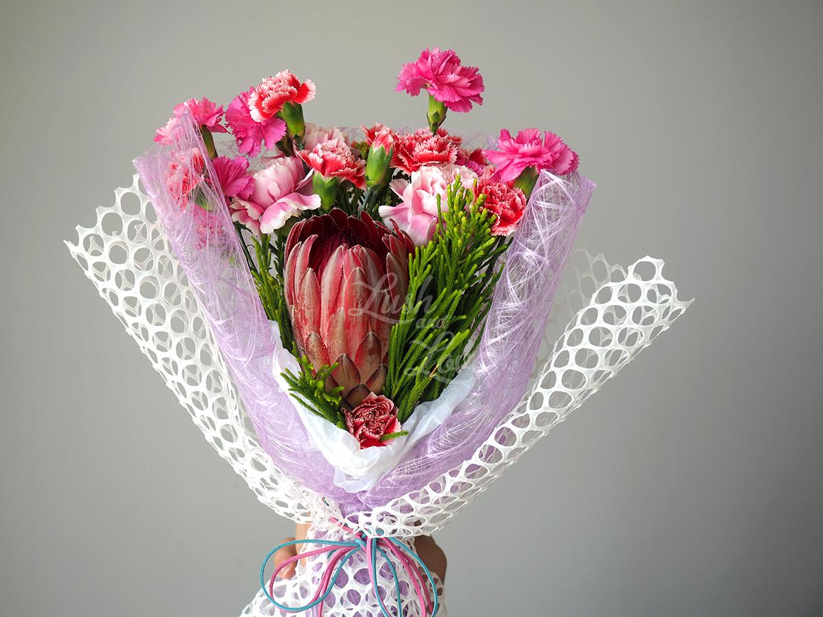Protea Sylvia flowers