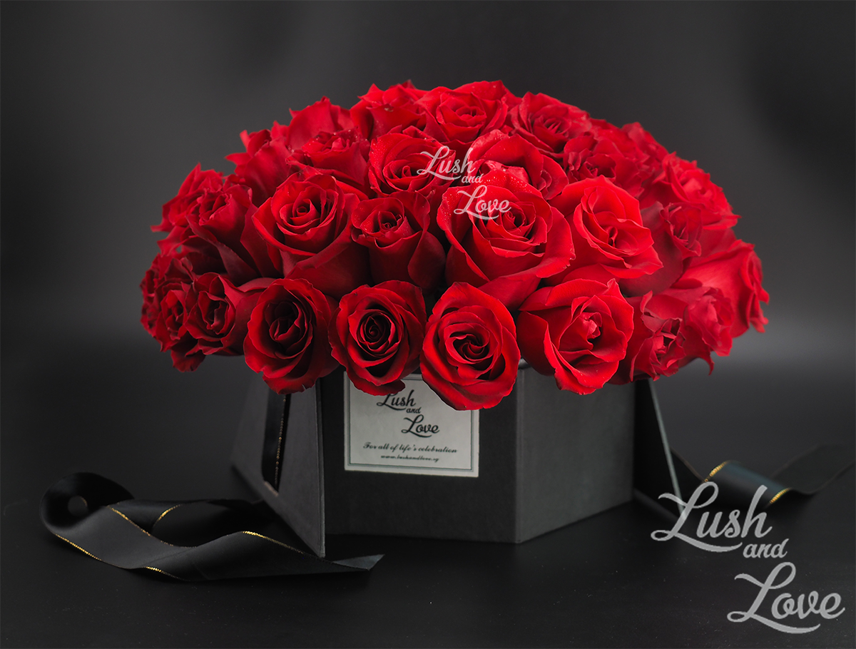 Lush and Love Ultimate Elegance 4