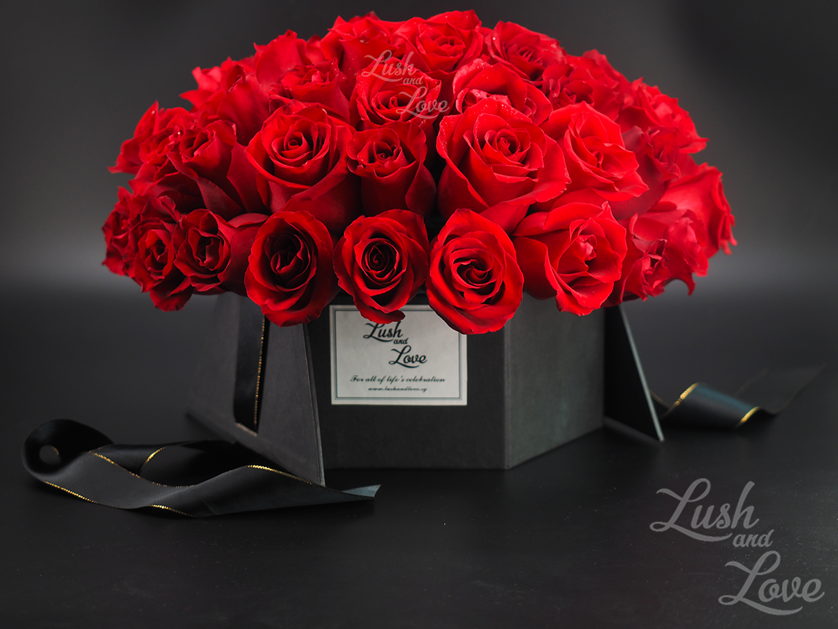Lush and Love Ultimate Elegance