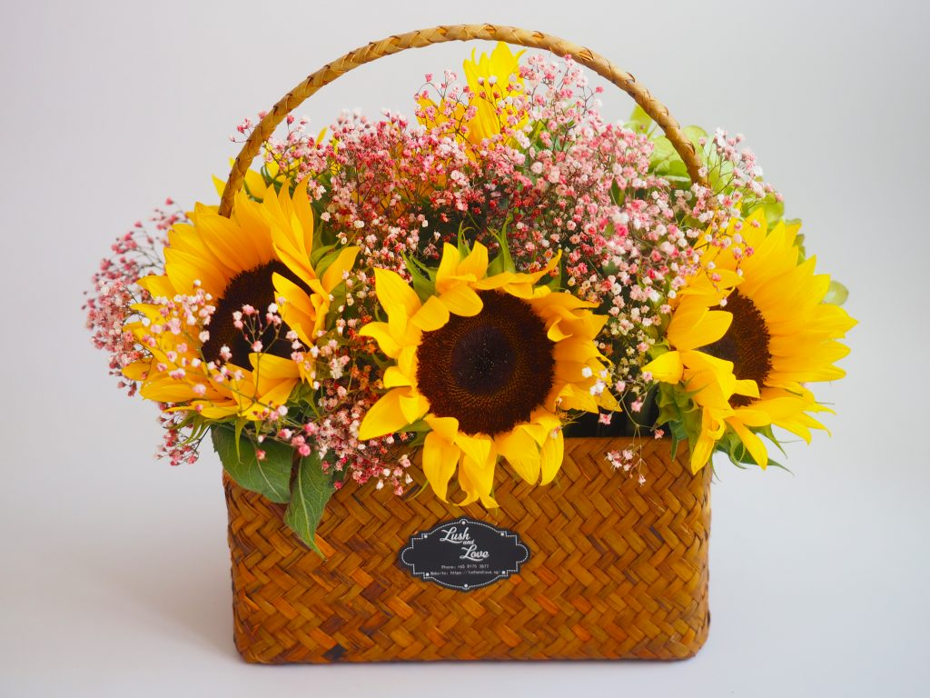 Brigitte - Lush and Love (Fresh Sun Flower in basket) - 01