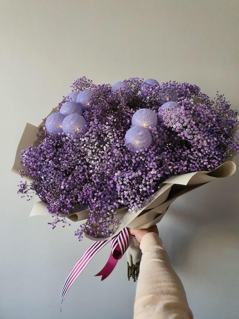 Baby_breath_purple_sg_01