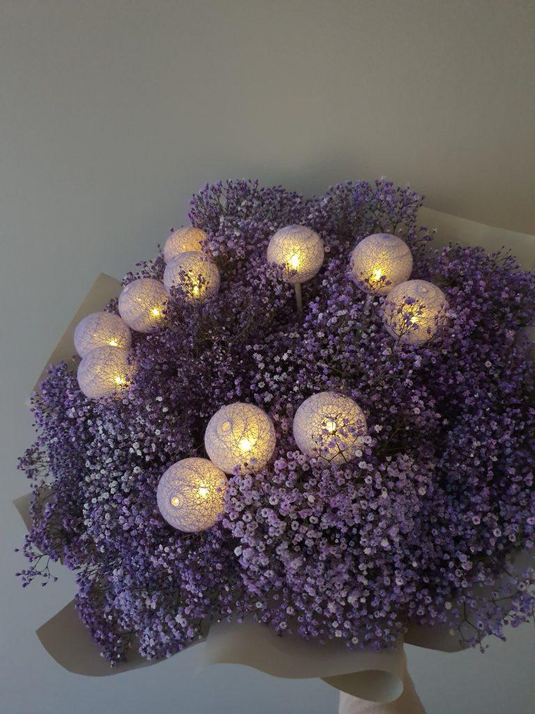 Baby_breath_purple_sg_04