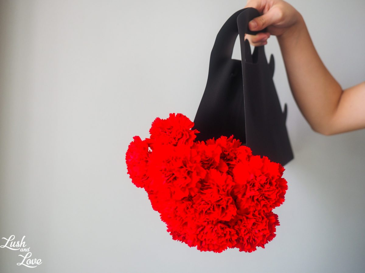 Lush and Love red carnations