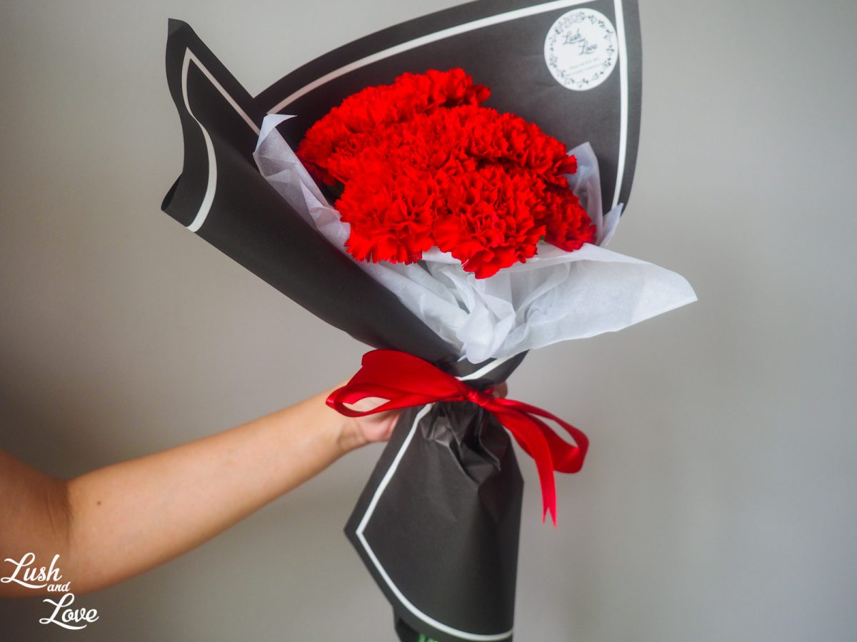red carnations with black paper
