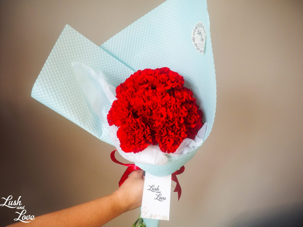 Brielle - Red carnations