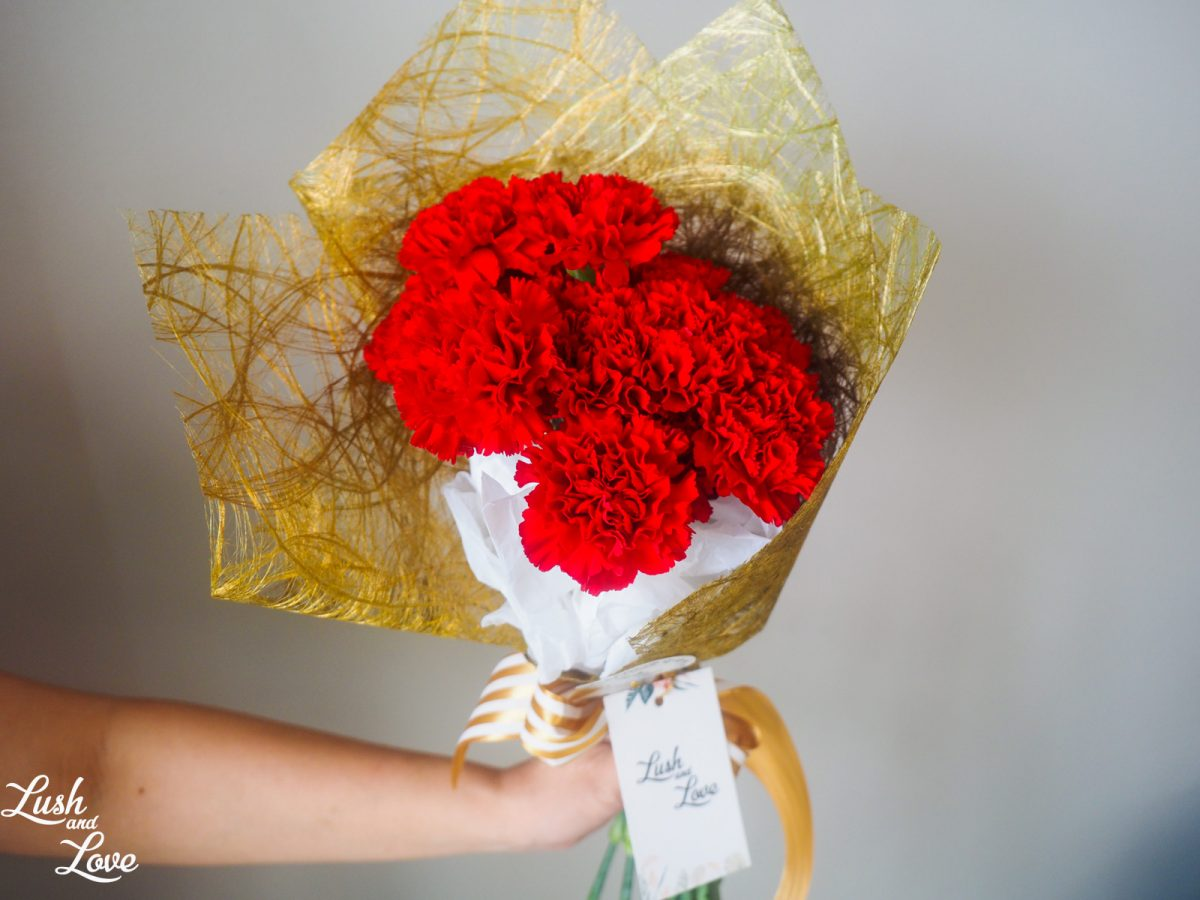 Adelyn - Red Carnations
