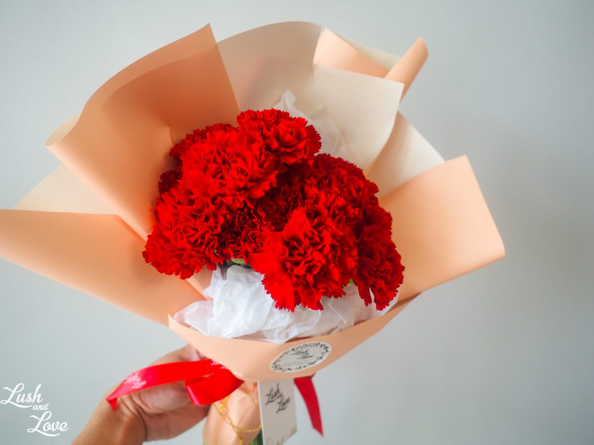 Bethany - Red Carnations