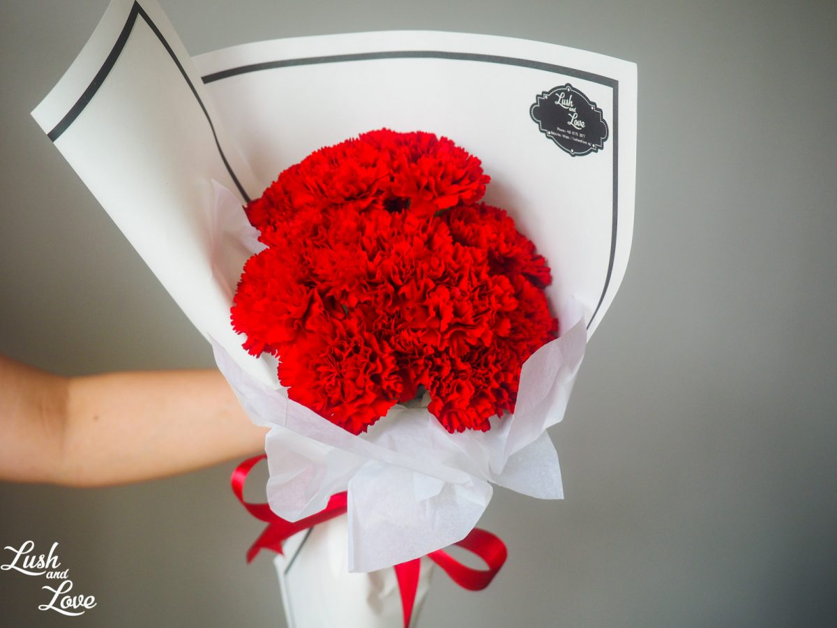 Harriet (white Paper) - Red Carnations