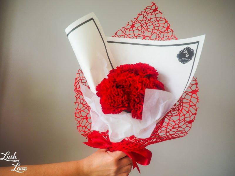 Haidyn - Red carnations