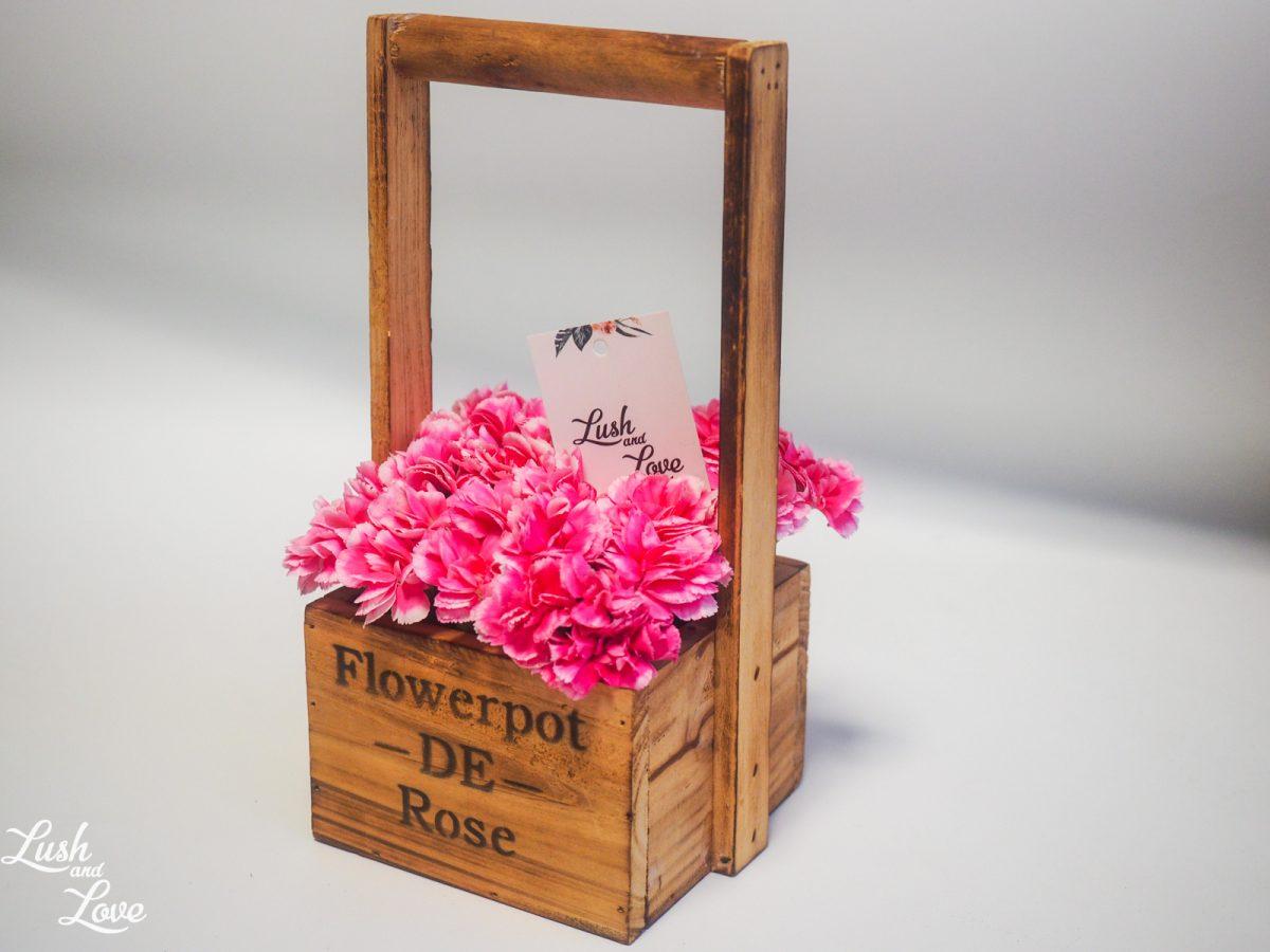 cerise color carnations