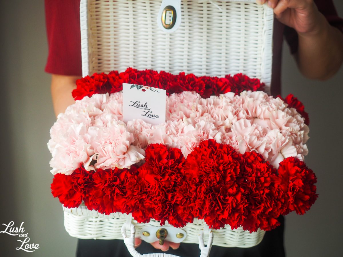 Bryleigh - Red and pink Carnation
