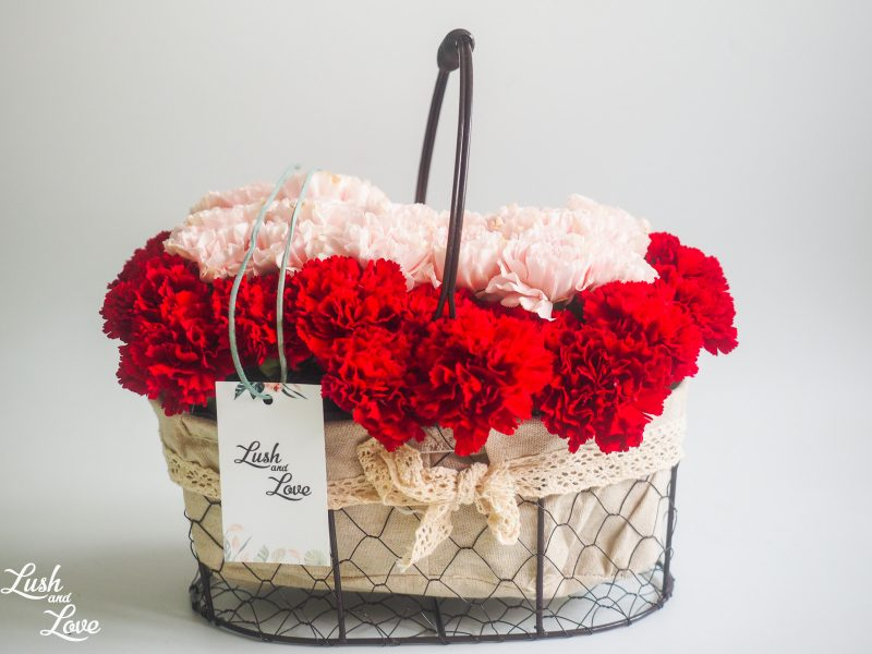 mix carnation basket