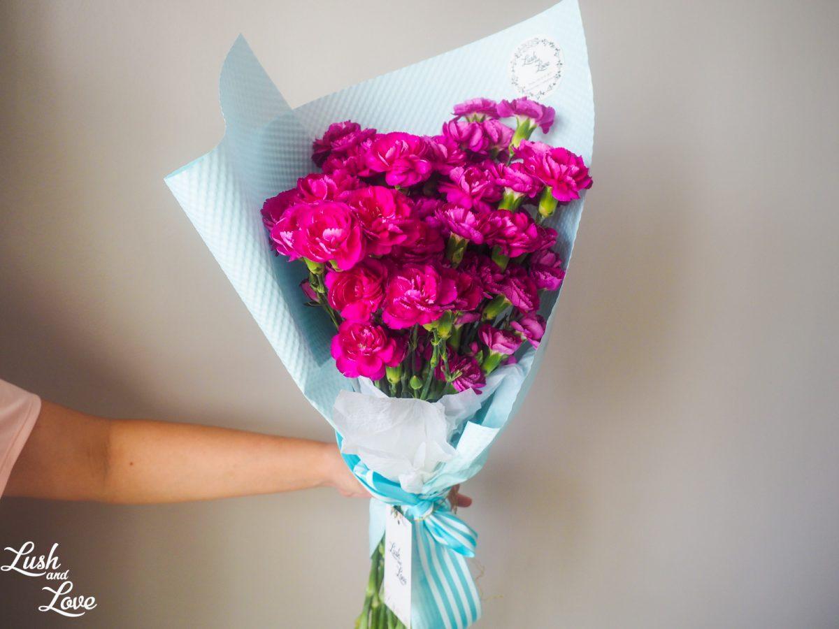 purple carnations