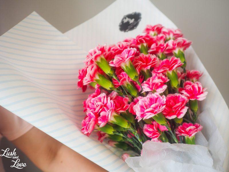 spray carnations