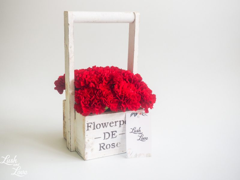 carnations box